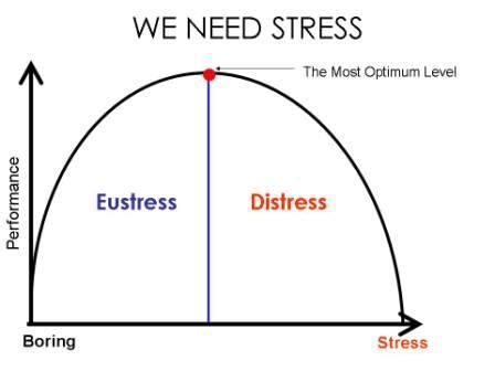 In level management stress thesis